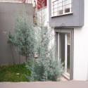 Karabük Yüzüncü Yıl Mahallesi'nde Kiralık Daire (2+0) 55 m2